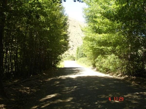 road-between-tarka-springvalley