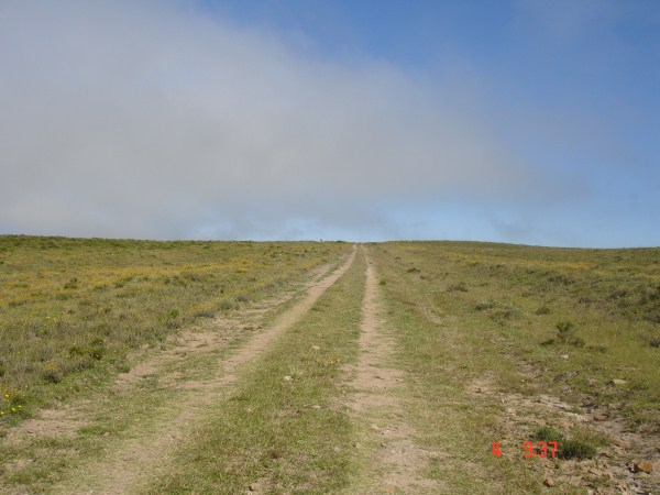 ruitjies-road-1