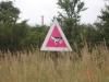 beware-gay-cows